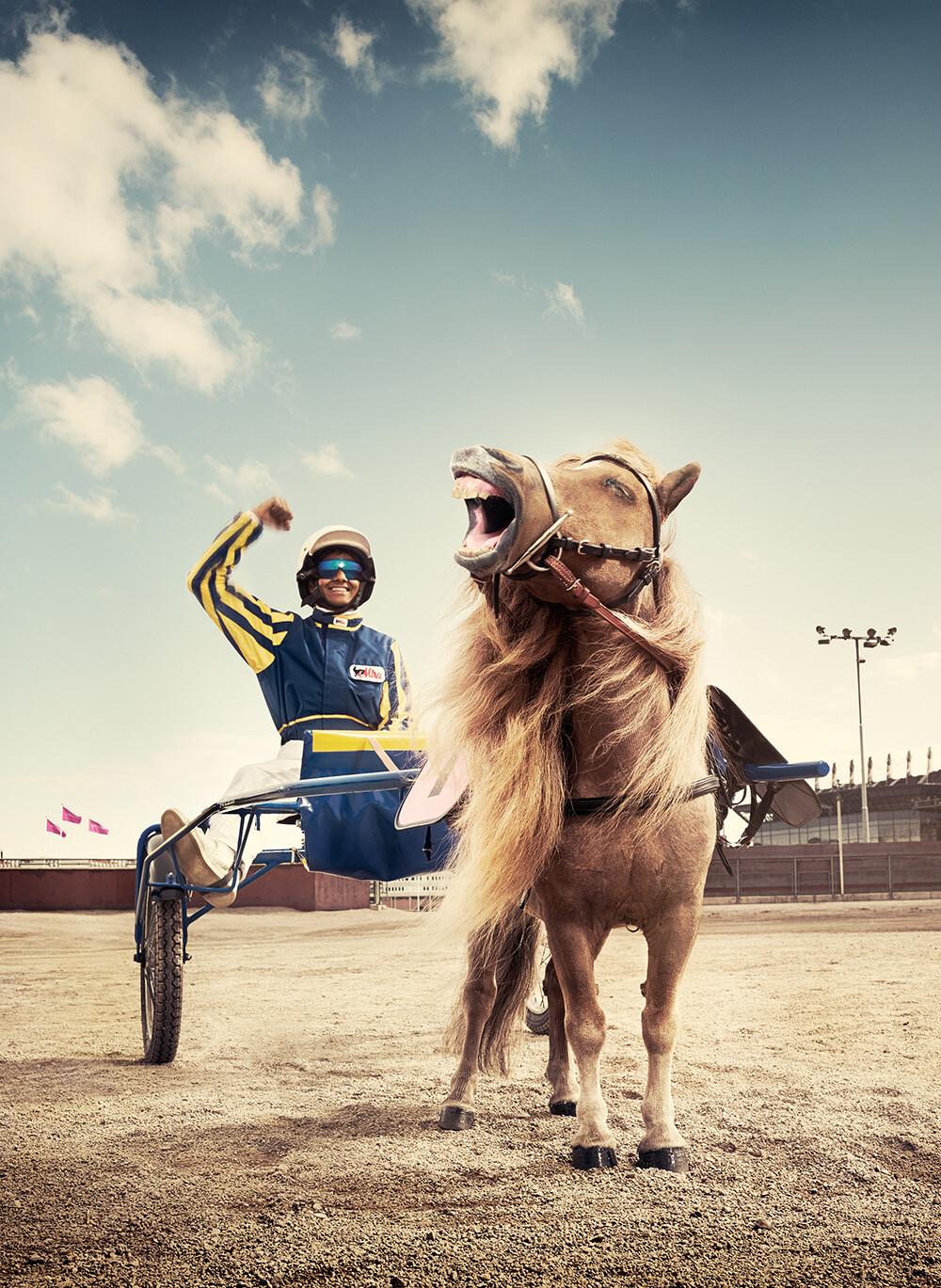 Alexander crispin atg vinnie horse solvalla3