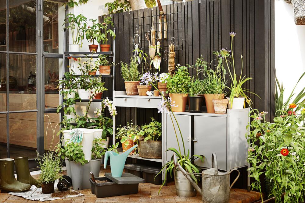 Garden Storage Outdoor 01 004 RGB LOW