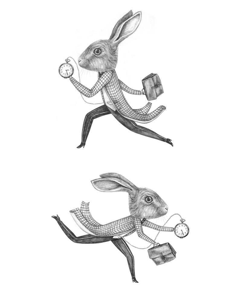 Rabbits2