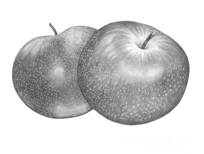 Arket apples1 670 670
